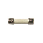 250mA 250V Fast-Acting GMA Ceramic Fuse 5/Pkg 216